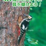 スマホのアプリで雑誌の購読へ 「鳥ナビ」