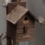 2012年9月 そろそろ巣箱の設置時期です
