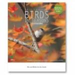 「日本野鳥の会」のカレンダーが素敵だ